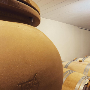 Ça bouge au domaine Sauveroy ! Bienvenue à nos nouvelles Amphores TAVA 🇮🇹 qui viennent compléter notre chai à barriques 😋 Nouvelle expérience en cours... 🥰🍷 @amphore.tava #cabernetfranc #vinrouge #vinamphore #conversionbio #sauveroy #vinsdeloire @vinsvaldeloire #vignoble #anjou #angers #winery #winelover #winetasting @collegeculinairedefrance