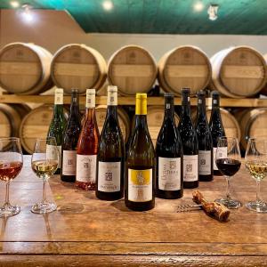 Votre vigneron vous accueille du lundi au samedi de 9h à 12h30 et de 14h à 18h. Au programme ce samedi 6 Juin, convivialité, échange, dégustation et vente directe !  Domaine Sauveroy Le Sauveroy 49750 Saint-Lambert-du-Lattay Plus d'infos : 0241783059  #cheninblanc #cabernetfranc #conversionbio #vigneron #vignoble #anjou #anjoutourisme #valdeloire #angers #nantes #cholet @anjourouge @coteauxdulayon_aoc @fandechenin @rosedeloireaoc
